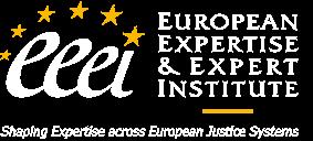EEEI Experts Institute